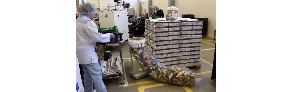 Sistemi di confezionamento Longpac per settore industriale | Samot